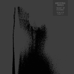 Ancestral Voices - Night of Visions Remixes
