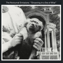 MNQ 146 Nocturnal Emissions - Drowning In A Sea Of Bliss by Nocturnal Emissions